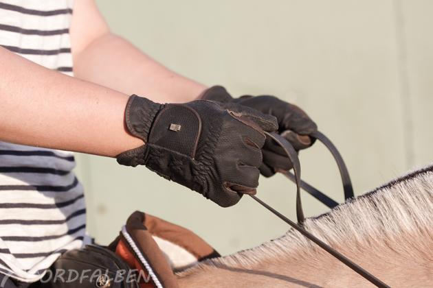 unruhige Reiterhände