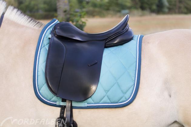 pferd (3)