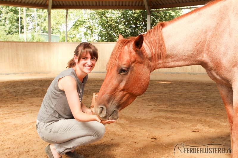 pferdefluesterei-2-3