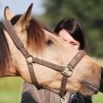 Leichtigkeit mit Horsebond