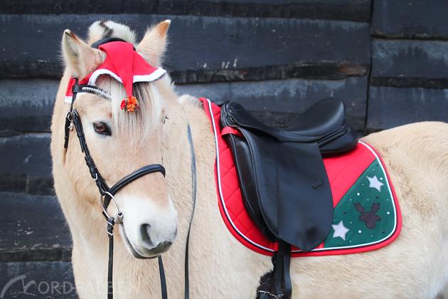 DIY Weihnachten Pferd