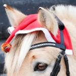 """DIY-FRIDAY: Kreativ-Challenge #2 """"Weihnachtsmütze"""""""