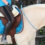 DIY-FRIDAY: Reiten mit Halsring – der große Traum