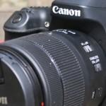 Einstieg in die Pferdefotografie – die geeignete Kamera
