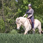 Testbericht: Barefoot Ride-on Physio Reitpad