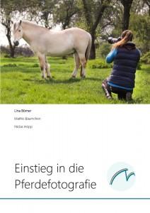 Einstieg in die Pferdefotografie