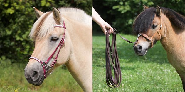 Biothane Pferd