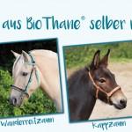 equip yourself: Pferdezubehör aus BioThane selber machen