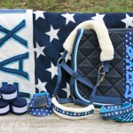 Schicke Minis – DIYs für ein stylisches Minishetty