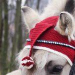 Weihnachtsmütze fürs Pferd häkeln