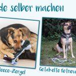 equip yourself: Zubehör für Hunde selber machen