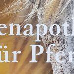 Gelesen: Bienenapotheke für Pferde