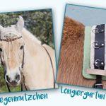 equip yourself: Häkeln und Stricken für Pferd und Reiterin