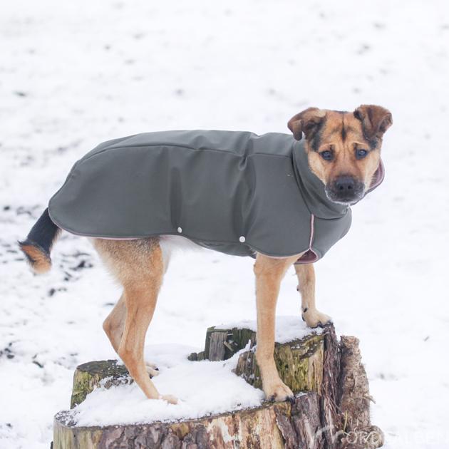 Hundemantel DIY